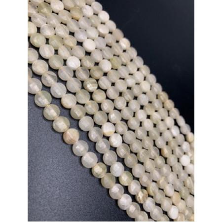 Каменные бусины, Окаменелый коралл, огранка, монетка, 6 мм, длина нити 38 см